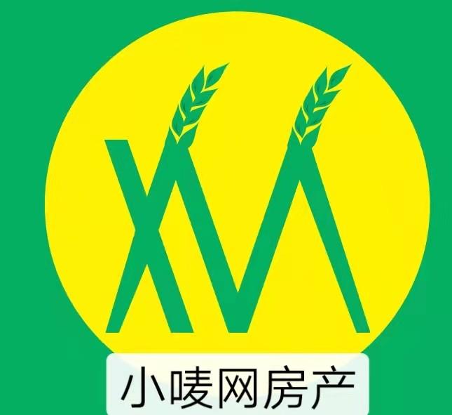 阜阳市小唛网房地产经纪有限公司